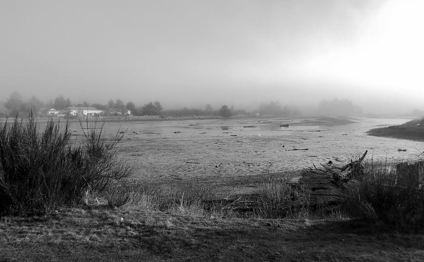 Englishman River on a foggy sunnyday