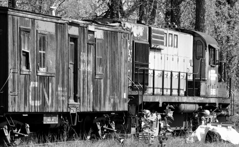 OLD CN TRAIN