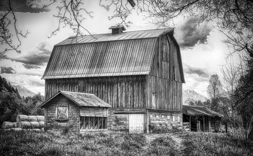 Chilliwack Barn